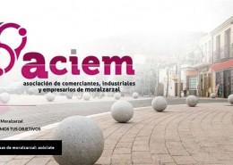 Detalle de la web de ACIEM