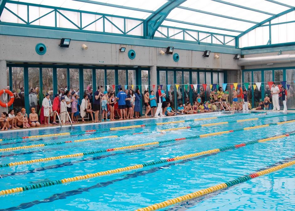 Competici n nataci n infantil ads en la piscina cubierta for Piscina cubierta galapagar