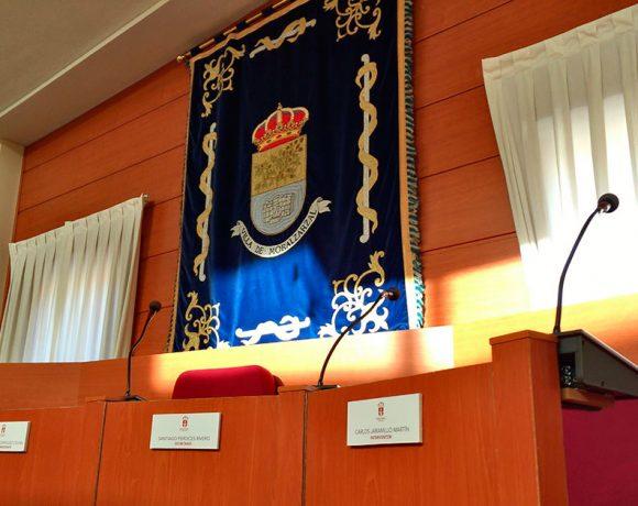 Salón de Plenos del Ayuntamiento de Moralzarzal