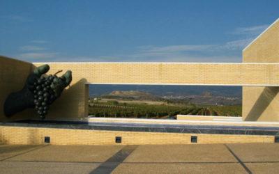 museo_vino_vista