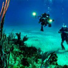 Dos buceadores en un lecho marino