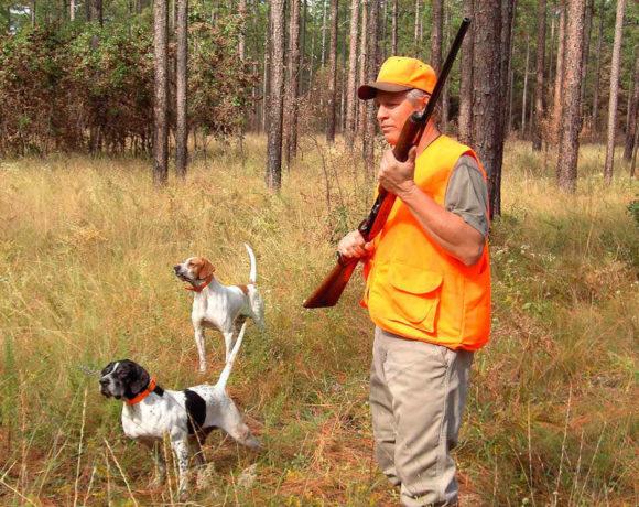 Un cazador con dos perros