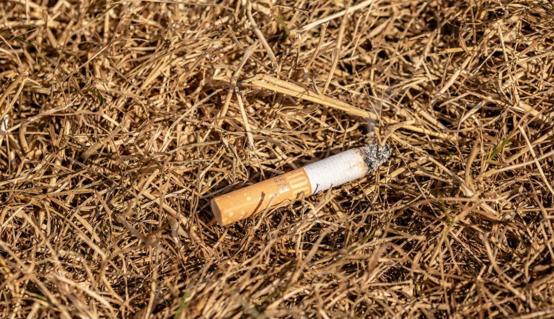 Colilla de cigarrillo sobre hierba seca