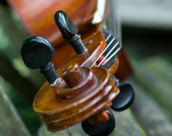 Detalle de un violoncelo