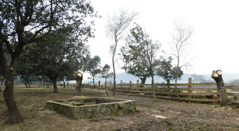 Corral de ganado vacuno en Moralzarzal
