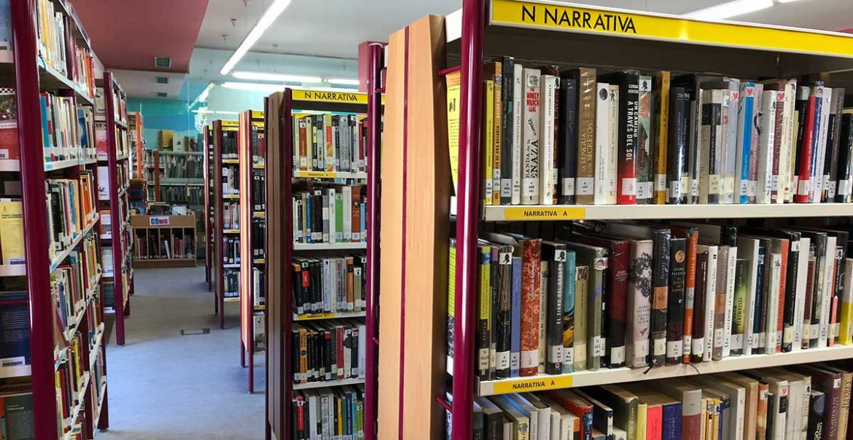 Estanterias de la biblioteca de Moralzarzal