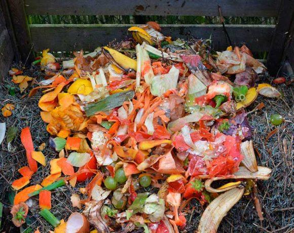 Residuos en una compostera