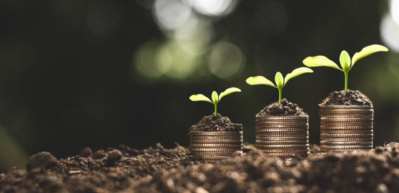 monedas con plantas