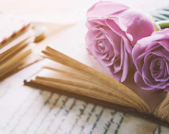 Libro abierto con rosas encima
