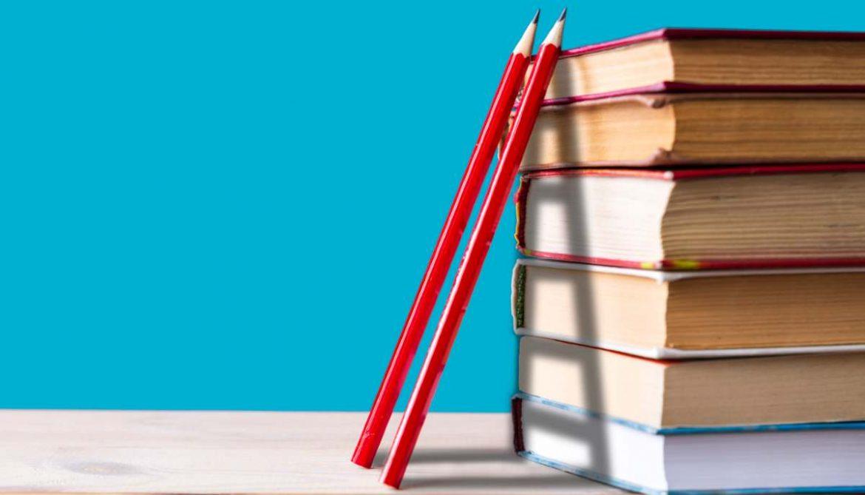 Lote de libros con lápices apoyados