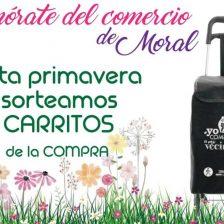 Cartel promocional con un carrito de la compra de Moralzarzal
