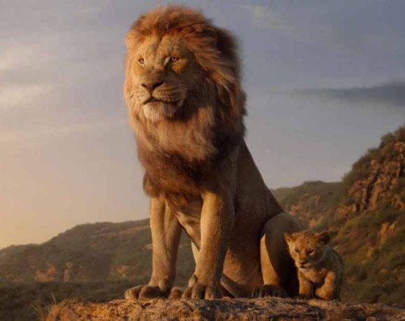 Un león y su cachorro miran hacia el horizonte